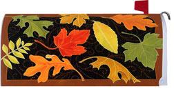 Fall - Beautiful Le...