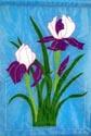 Flowers - Double Iris