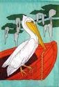 Birds - Pelican