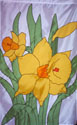 Flowers - Daffodils