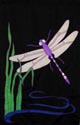 Insects - Dragonfly...